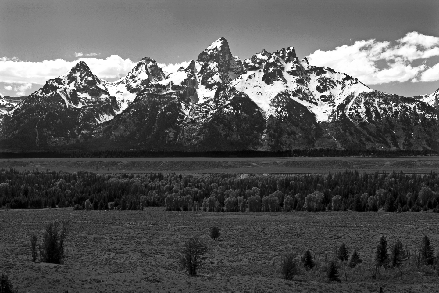 Grand-Tetons-View-BW
