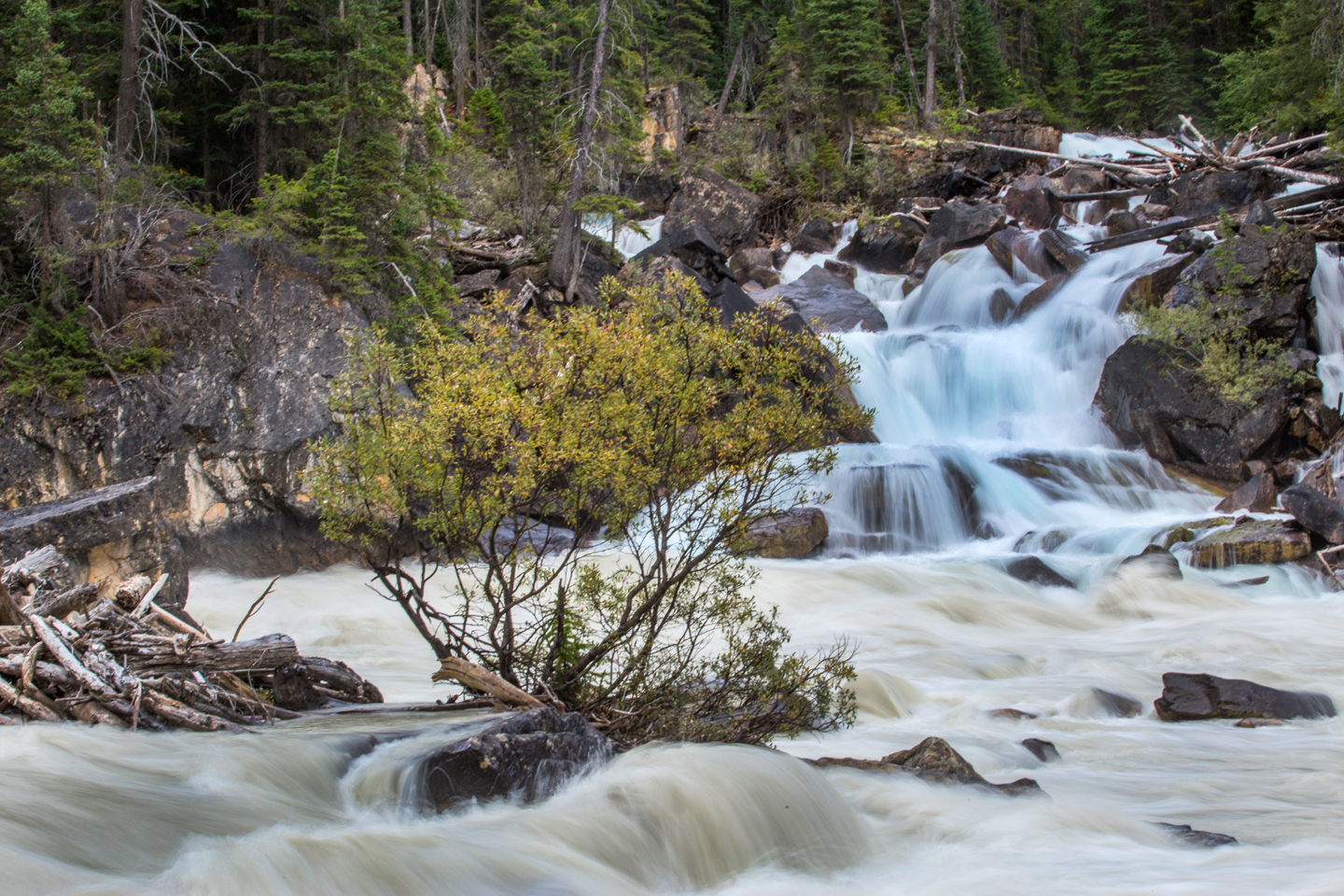 merging-of-the-waters-yoho-national-park