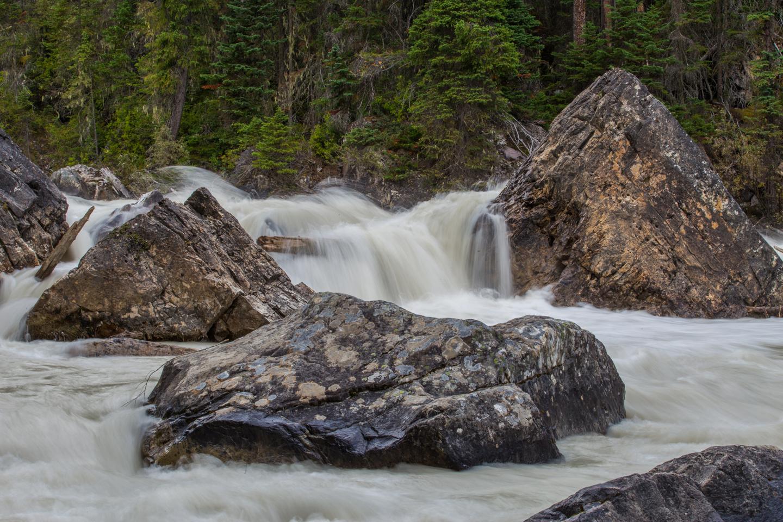 merging-of-the-waters-yoho