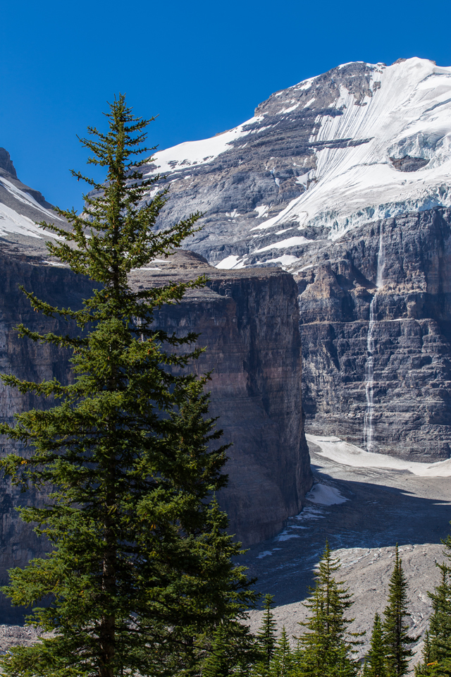 plain-of-six-glaciers-hike-waterfall-tree