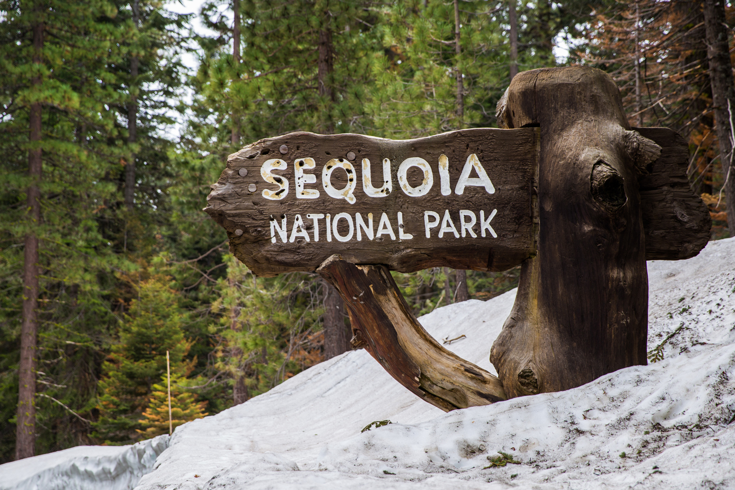 Sequoia-National-Park-Sign