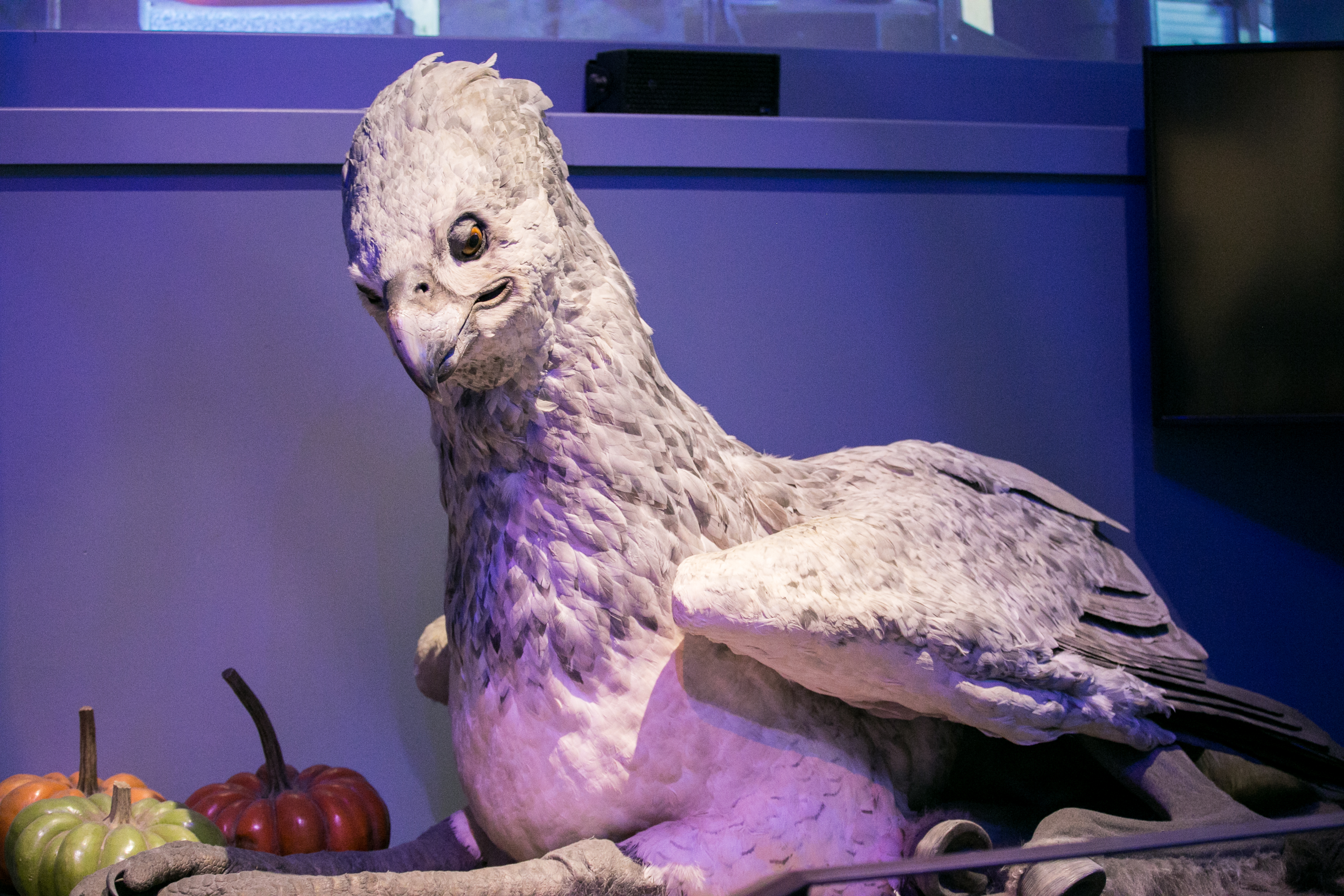 harry-potter-studio-tour-buckbeak