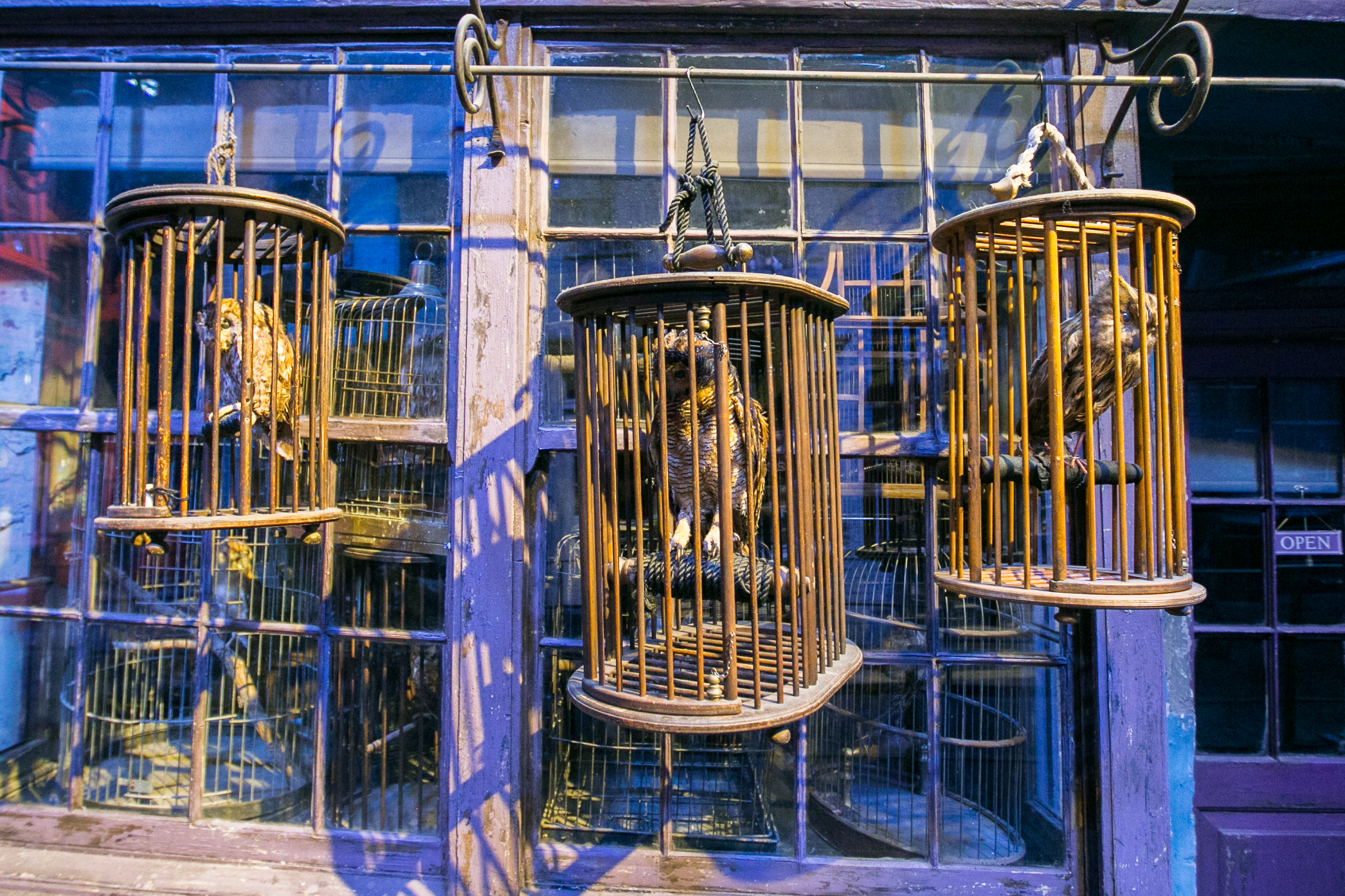 harry-potter-studio-tour-diagon-alley-owls
