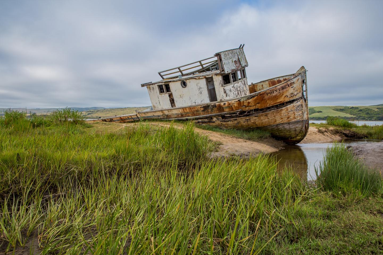 Point-Reyes-Shipwreck-Grass-Julie-Boyd-Photography