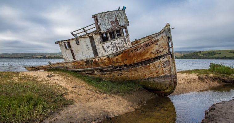 Four Places to Visit in Point Reyes National Seashore
