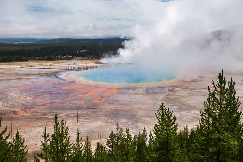 An Epic Day Driving the Yellowstone Loop| Yellowstone National Park