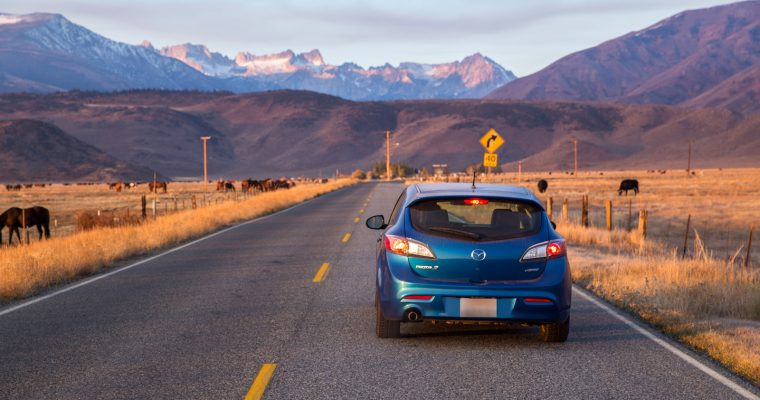 Seven Things to Bring on Your Next Road Trip