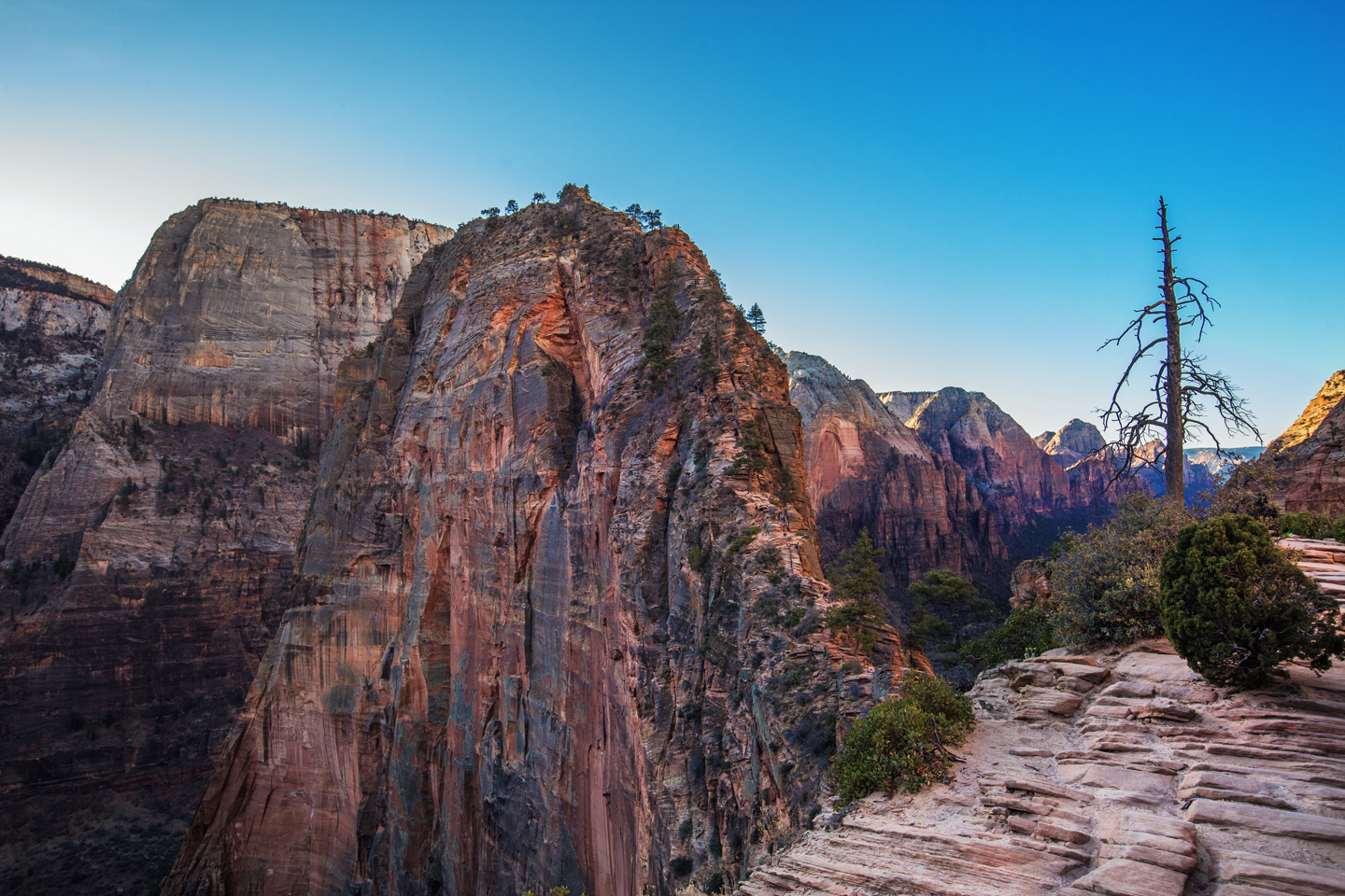 Hiking Angel's Landing | Zion National Park
