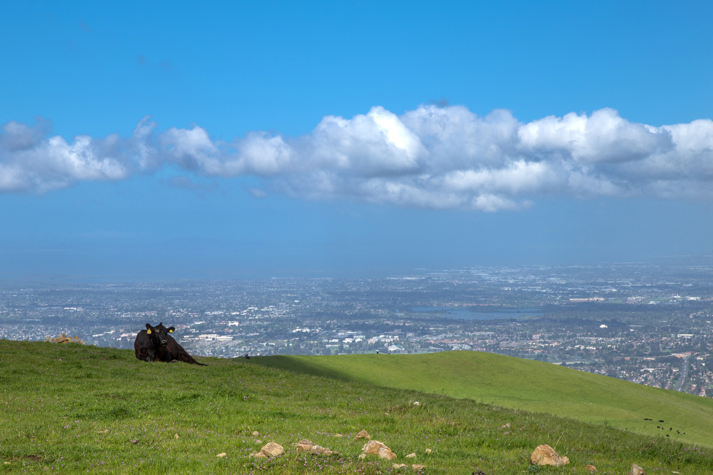 Hiking Mission Peak Best Views Silicon Valley California