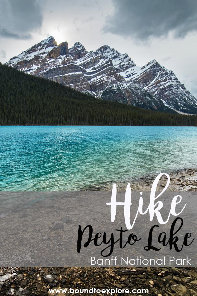Shore of Peyto Lake