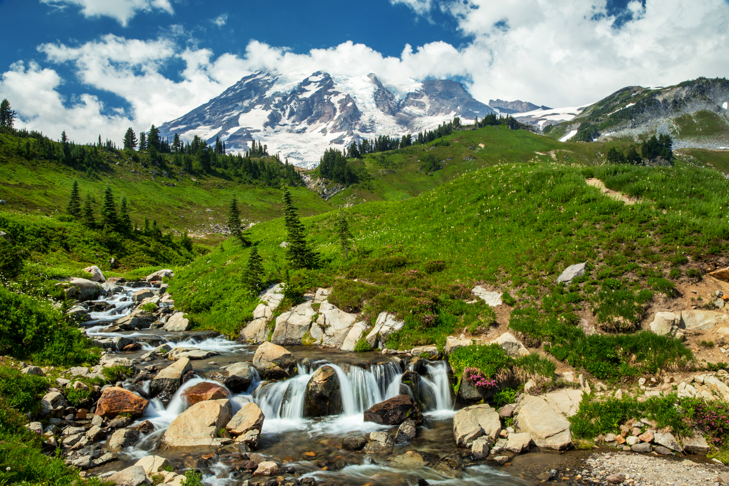 Our Anniversary Trip | Visit Mount Rainier National Park
