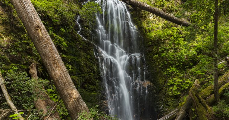 Hiking Berry Creek Falls | Big Basin Waterfall Hike